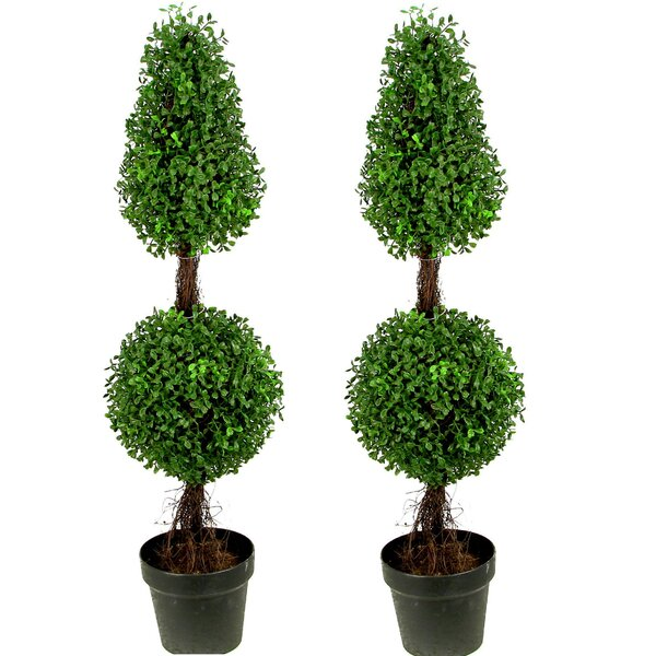 Artificial Double Ball Shaped Boxwood Round Tapered Topiary in Pot (Set of 2) by Laurel Foundry Modern Farmhouse