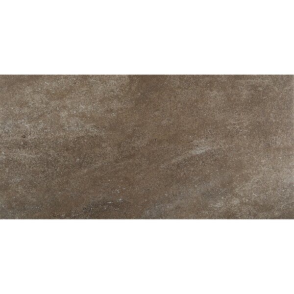 Avondale 12 x 24 Porcelain Field Tile in West Tower by Daltile