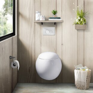 Plaisir Dual Flush Elongated Wall Hung Toilets Seat Included
