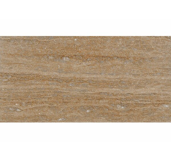 Vein Cut 12 x 24 Travertine Field Tile in Walnut Honed by Parvatile