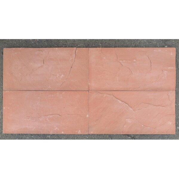 Natural Cleft Face, Gauged Back 12x24 Sandstone Field Tile