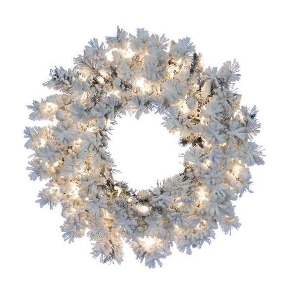 Flocked Wyoming Snow Pine Lighted Wreath by The Holiday Aisle