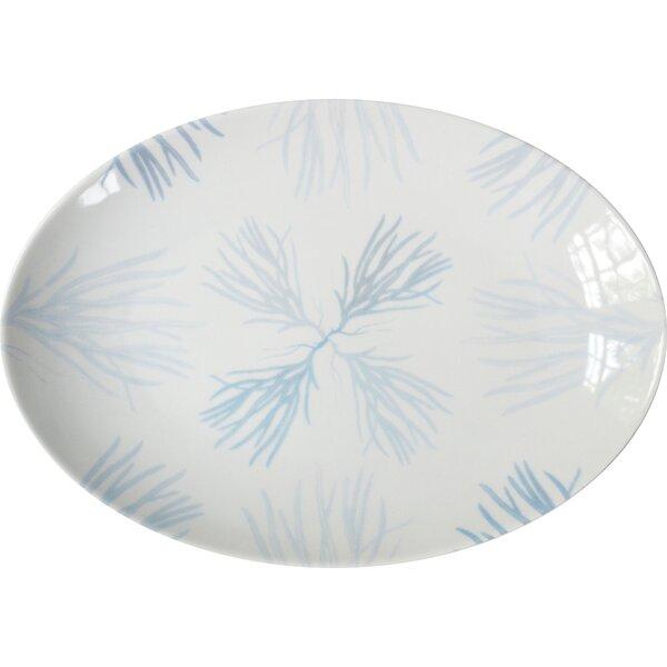 Marleton Medium Porcelain Flora Coupe Serving Platter by Rosecliff Heights