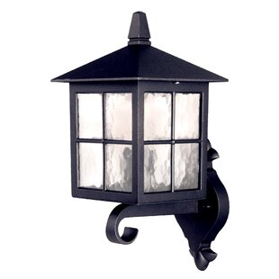 Popovich Up Outdoor Wall Lantern