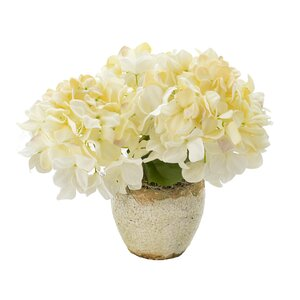 Faux Cream Hydrangea in Natural Vase