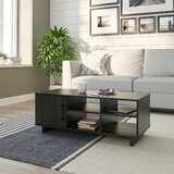 https://secure.img1-ag.wfcdn.com/im/94145180/resize-h160-w160%5Ecompr-r85/9401/94014391/Genrich+Coffee+Table+with+Storage.jpg