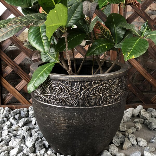 Newmarket Round Fancy Rim Wash Pot Planter by Charlton Home