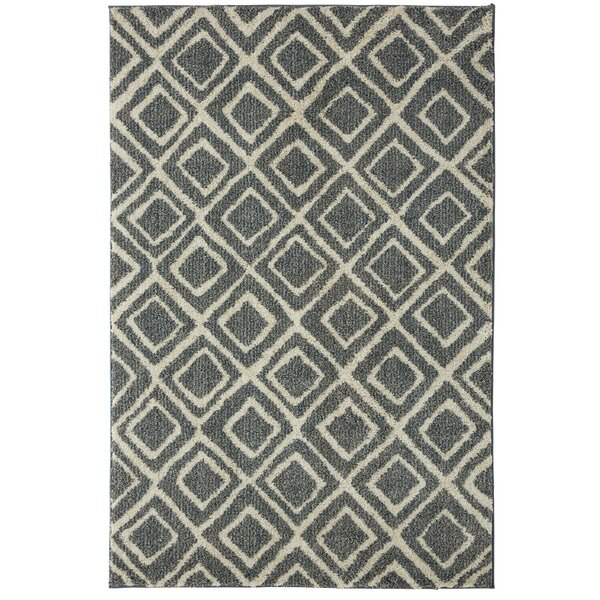 Mohawk Laguna Montego Blue Area Rug by Under the Canopy