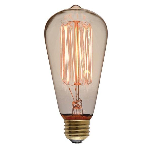 40W 110-130-Volt E26-Light Bulb by Nuevo