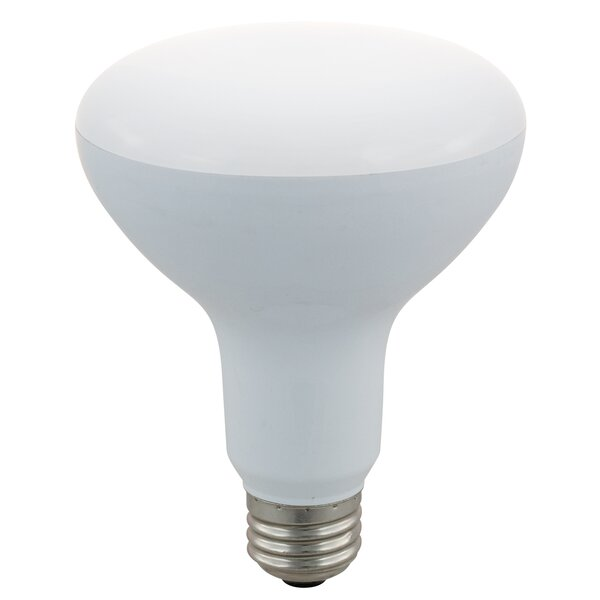 45W LED Light Bulb (Pack of 4) (Set of 4) by Energetic Lighting