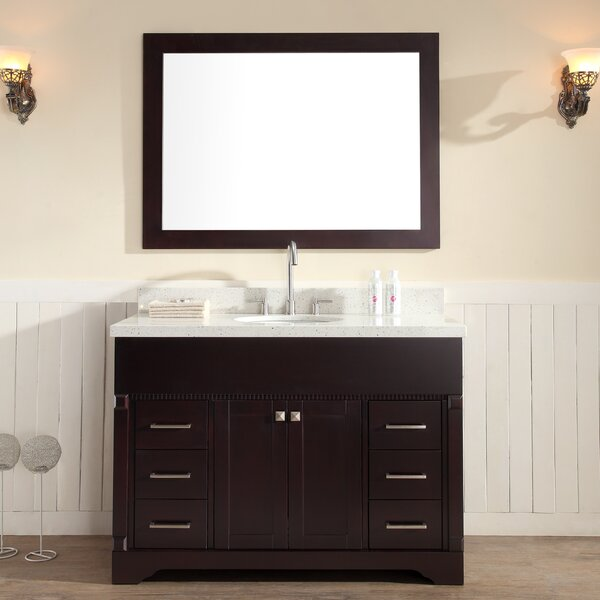 Geraldina 49 Single Sink Vanity Set with Mirror by Darby Home Co