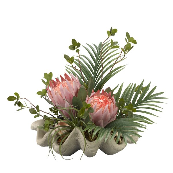 King Proteas Desktop Flowering Plant in Planter by Bay Isle Home