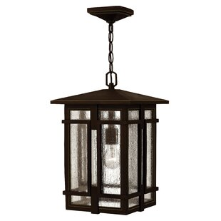Buying Tucker 1-Light Outdoor Hanging Lantern By Hinkley Lighting