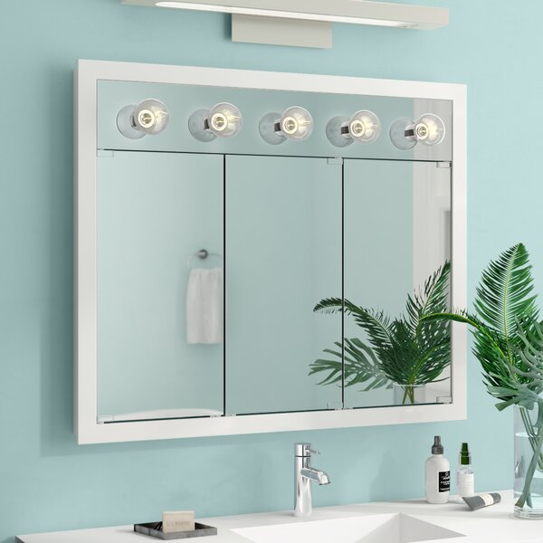 Suazo 36 x 30 Surface Mount Medicine Cabinet with Lighting