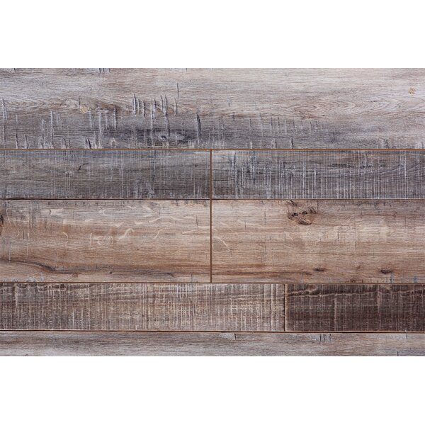 Barnwood Country 7.5 x 72 x 12.3mm Maple Laminate Flooring by Serradon