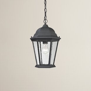 Shop for Grissom 1-Light Hanging Lantern By Alcott Hill