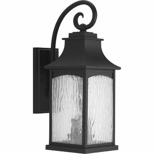 Compare & Buy De Witt 2-Light Outdoor Wall Lantern By Darby Home Co