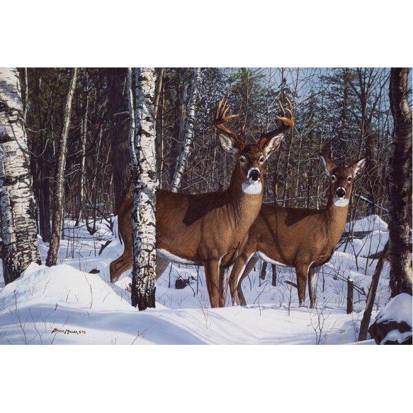 Lorcan Buck and Doe in the Snow Doormat by Loon Peak
