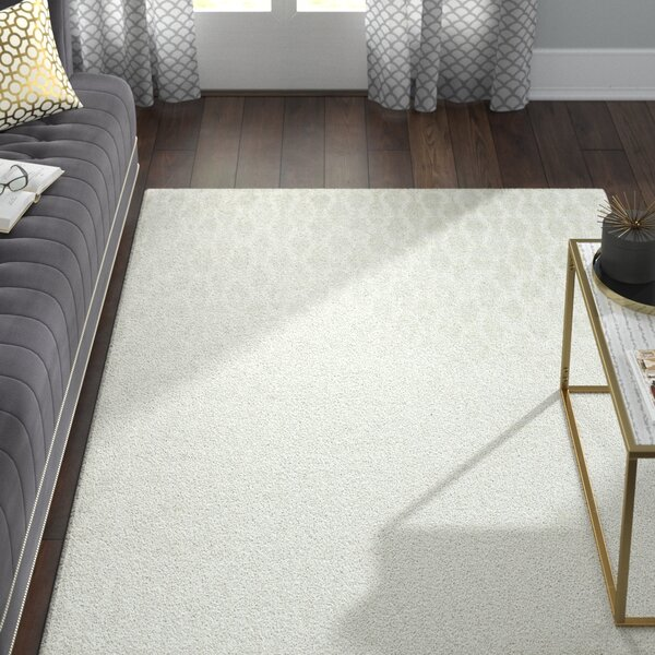 Birksgate Gray Area Rug by Willa Arlo Interiors