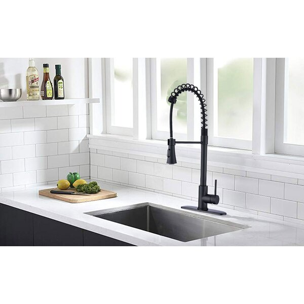 Kirtley Spring Pull Down Single Handle Kitchen Faucet