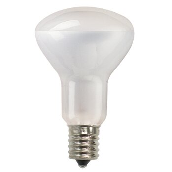 Intermediate 50W 130-Volt (2700K) Incandescent Light Bulb (Set of 14) by Bulbrite Industries