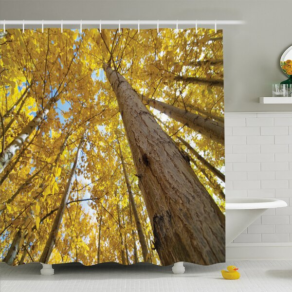 Forest Aspen Tree Leaves in Fade Tone Autumn Season Photo Image Shower Curtain Set by Ambesonne