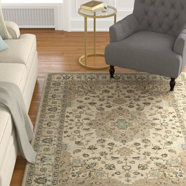 John Ivory Area Rug by Alcott Hill