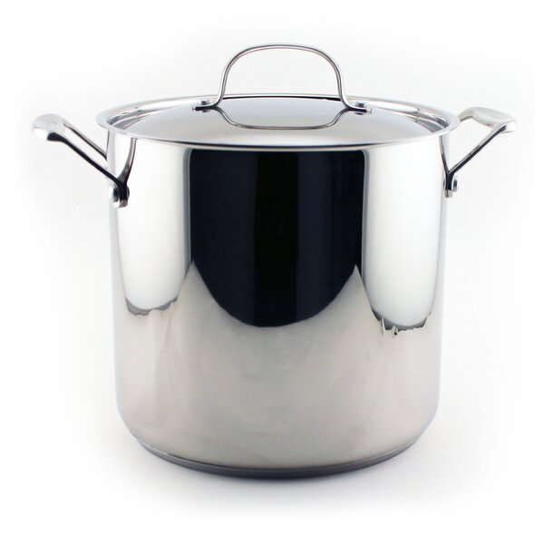 Earthchef 10 qt. Stock Pot with Lid by BergHOFF International