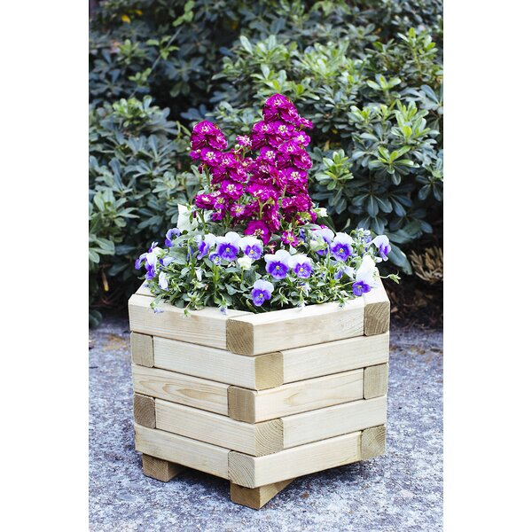 Hexagona European Spruce Planter Box by European Garden Living