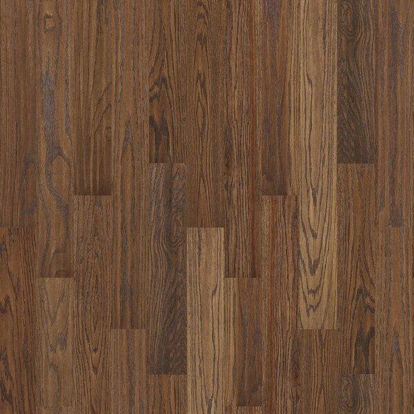 Chico 4 Solid Oak Hardwood Flooring in Low Glossy Medium by Shaw Floors