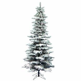 12 Ft Flocked Christmas Trees | Wayfair
