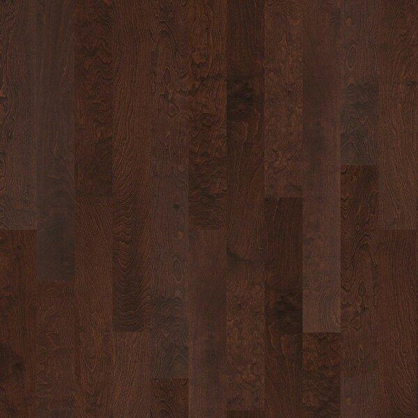 Pittman 5 Engineered Birch Hardwood Flooring in Dayton by Shaw Floors