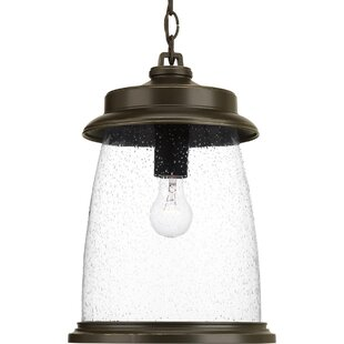 Online Reviews Millard 1-Light Outdoor Hanging Lantern By Breakwater Bay