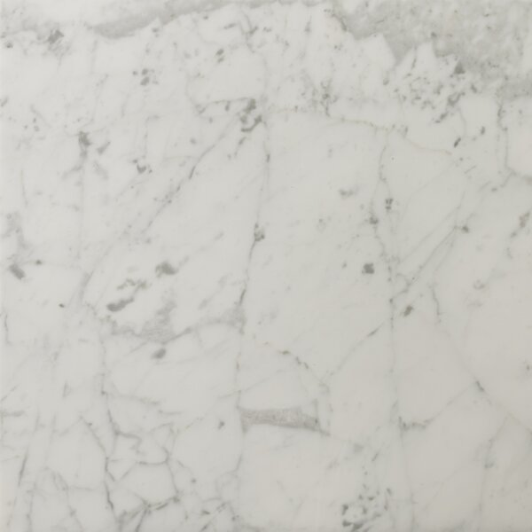 Marble 18 x 18 Field Tile in Bianco Gioia Honed
