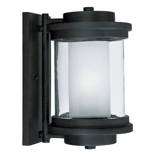 Affordable Price Percival 1-Light Outdoor Sconce By Brayden Studio
