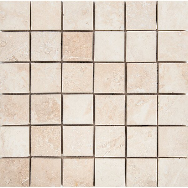 2 x 2 Stone Mosaic Tile in Ivory by Parvatile
