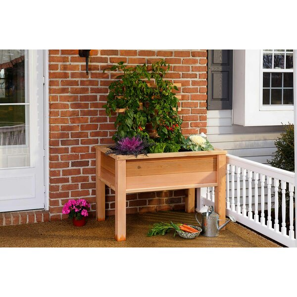 Elevated 3.5 ft x 2.3 ft Wood Raised Garden by YardCraft