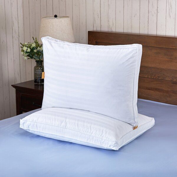 Bridgette Down Pillow (Set of 2) by Eider & Ivory
