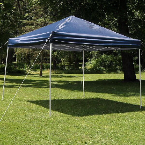 Alvina 12 Ft. W x 12 Ft. D Steel Pop-Up Canopy by Freeport Park