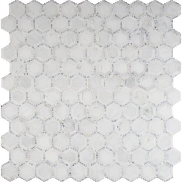 Telaio Hexagon Honed 2 x 2 Marble Mosaic Tile