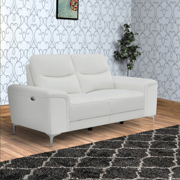Best Recommend Phillippi Reclining Loveseat by Red Barrel Studio by Red Barrel Studio