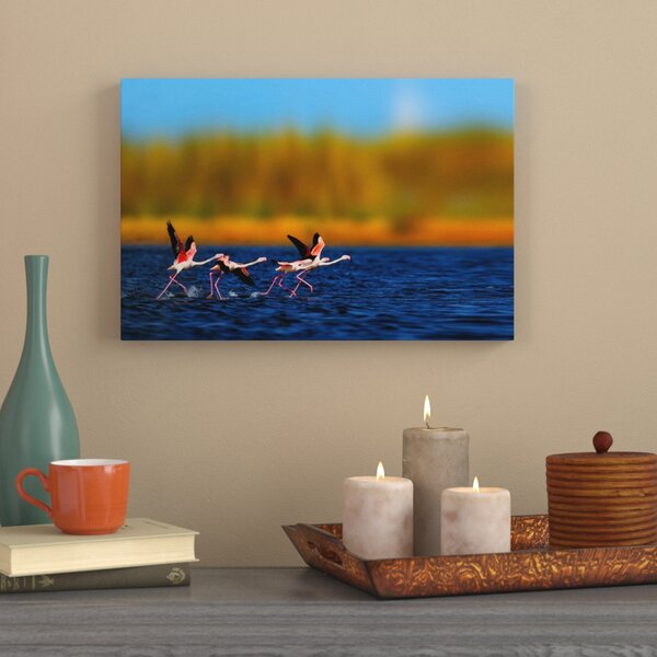 Photographic Print on Wrapped Canvas by World Menagerie