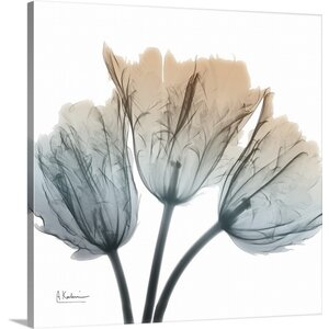 Earthy Tulips by Albert Koetsier Photographic Print on Canvas by Great Big Canvas