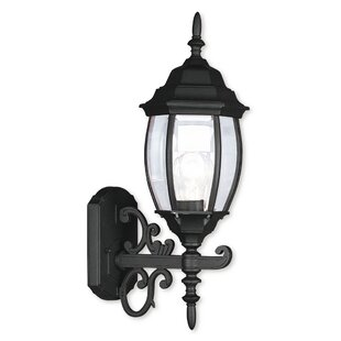 Read Reviews Beth 1-Light Outdoor Sconce By Darby Home Co