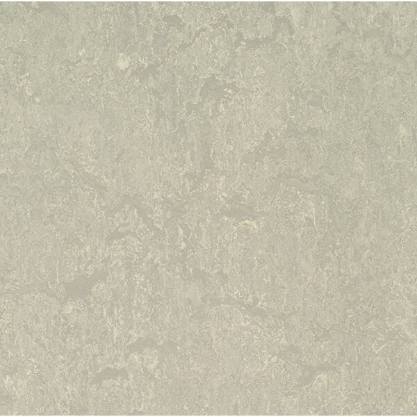 Marmoleum Click Cinch Loc 11.81 x 35.43 x 9.9mm Cork Laminate Flooring in Gray by Forbo