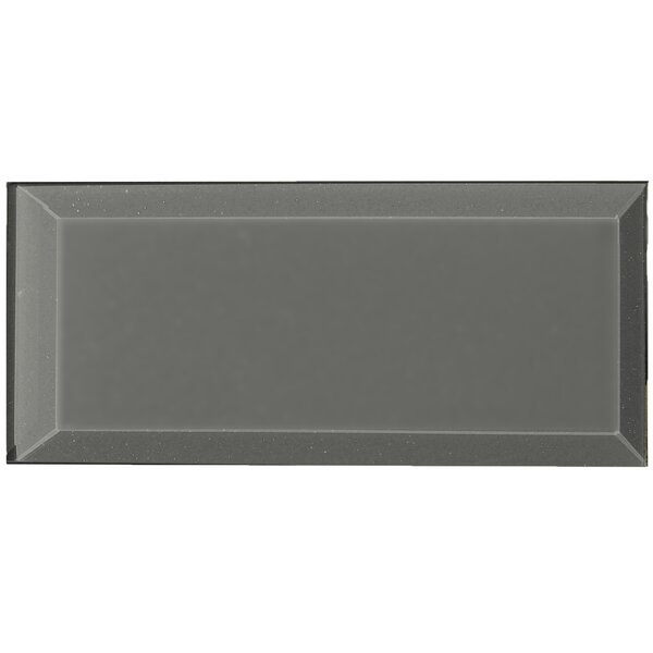 Frosted Elegance Joey 3 x 6 Glass Subway Tile in Glossy Gray by Abolos