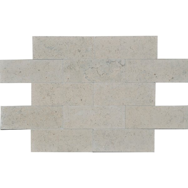 Duvel 3 x 8 Limestone Subway Tile in Gray by The Bella Collection