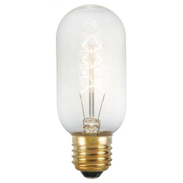 Portland 40W A E26-Light Bulb by Ren-Wil