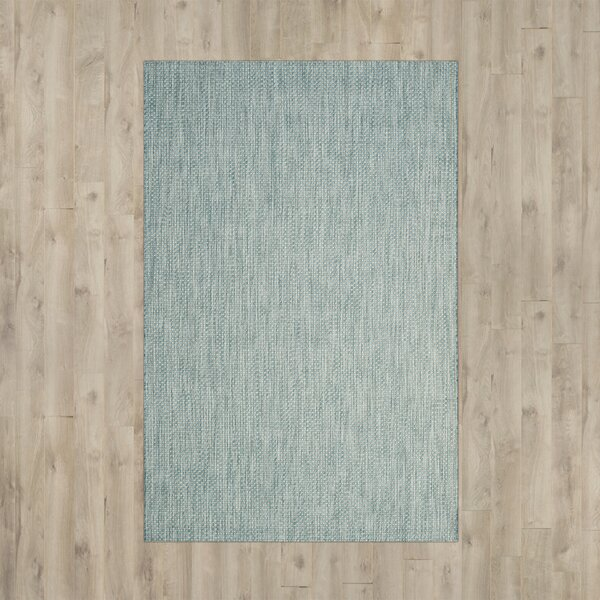 Brodie Aqua/Gray Area Rug by Langley Street