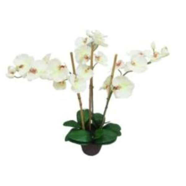3 Stemmed Orchids Stem in Pot by Bay Isle Home